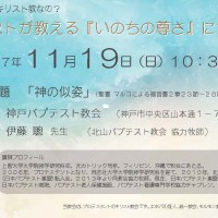 特伝_20171119_はがき表_20171021